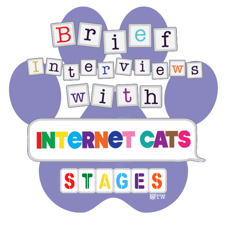 Brief Interviews with Internet Cats